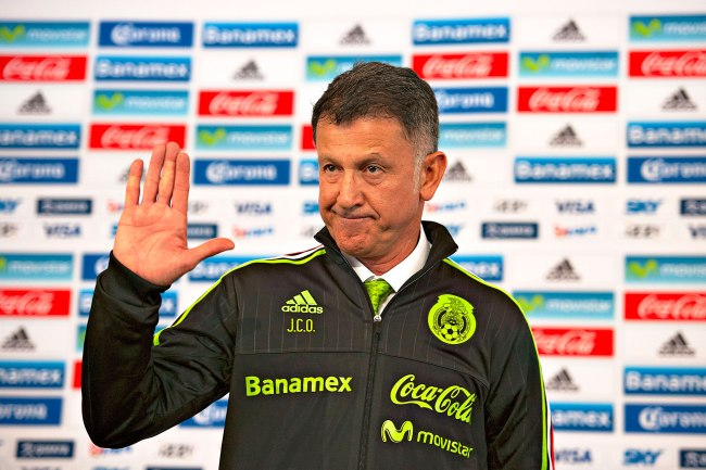 Osorio chau